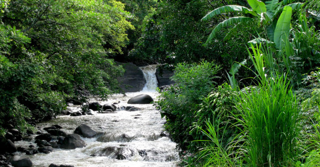 Costa Rica Booking for Your Family Reunion