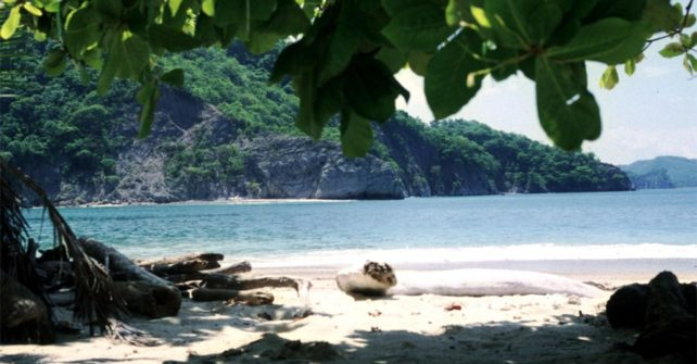 Fun Activities in Costa Rica That You Can Do in One Day